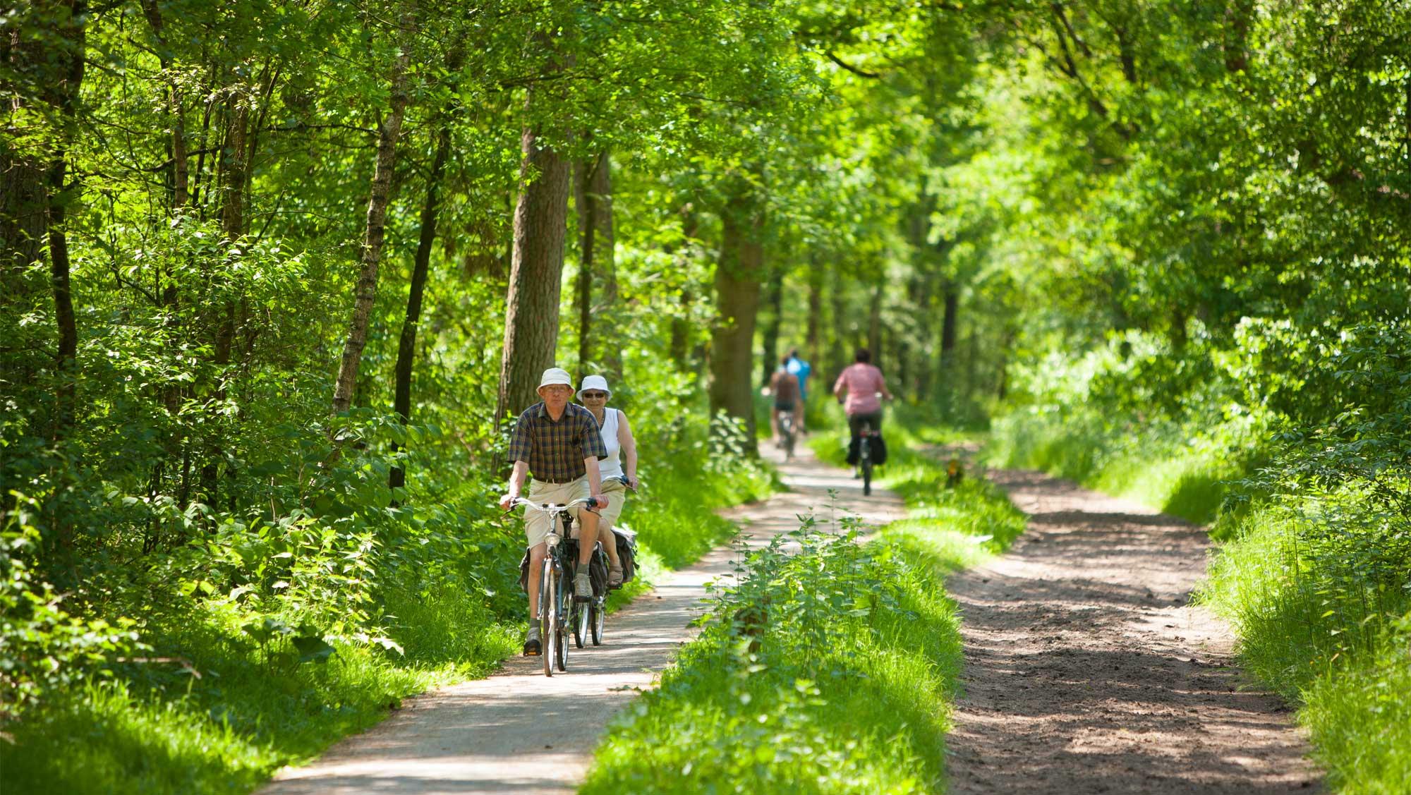 Omgeving Molecaten Park Landgoed Ginkelduin 09 fietsen