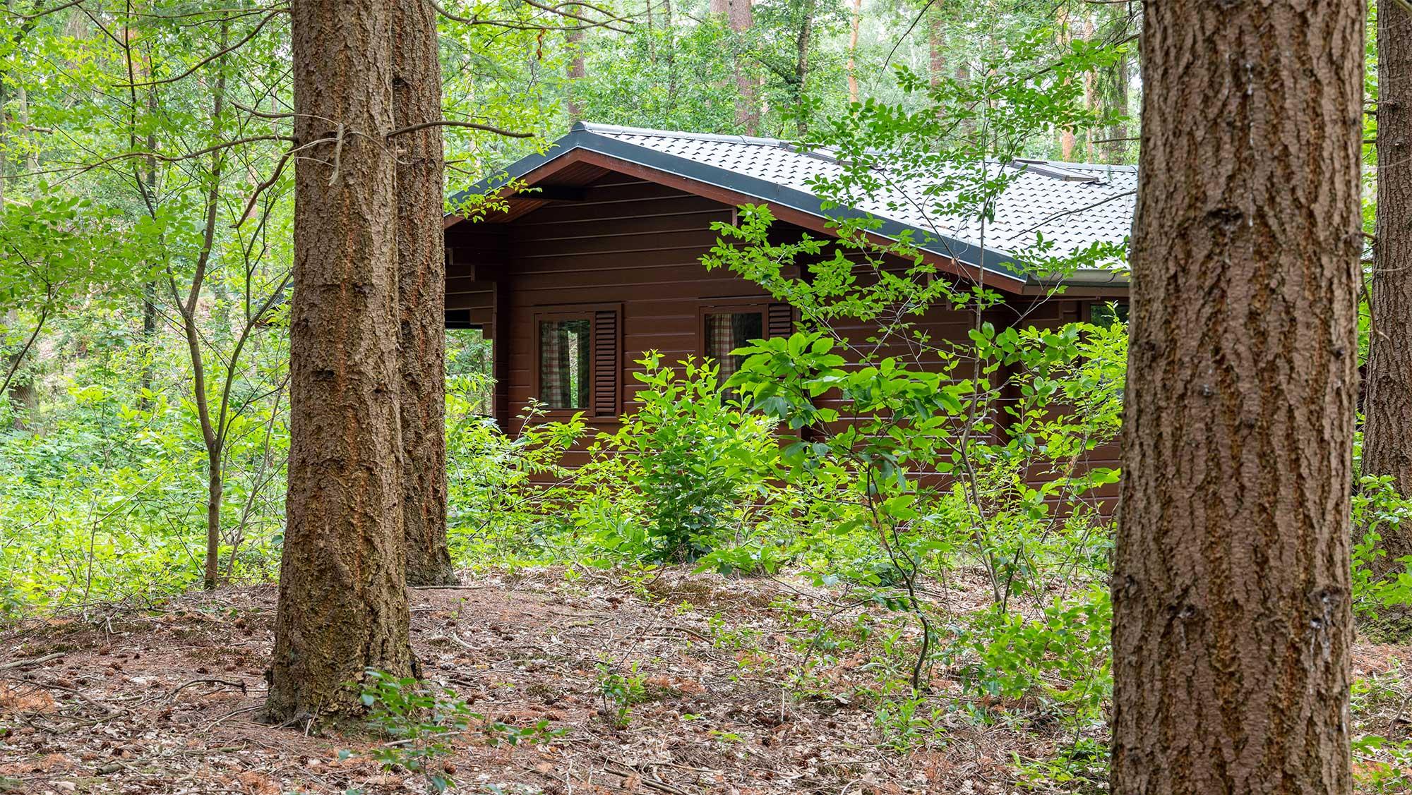 4pers bungalow Finse Molecaten Park Landgoed Ginkelduin 01