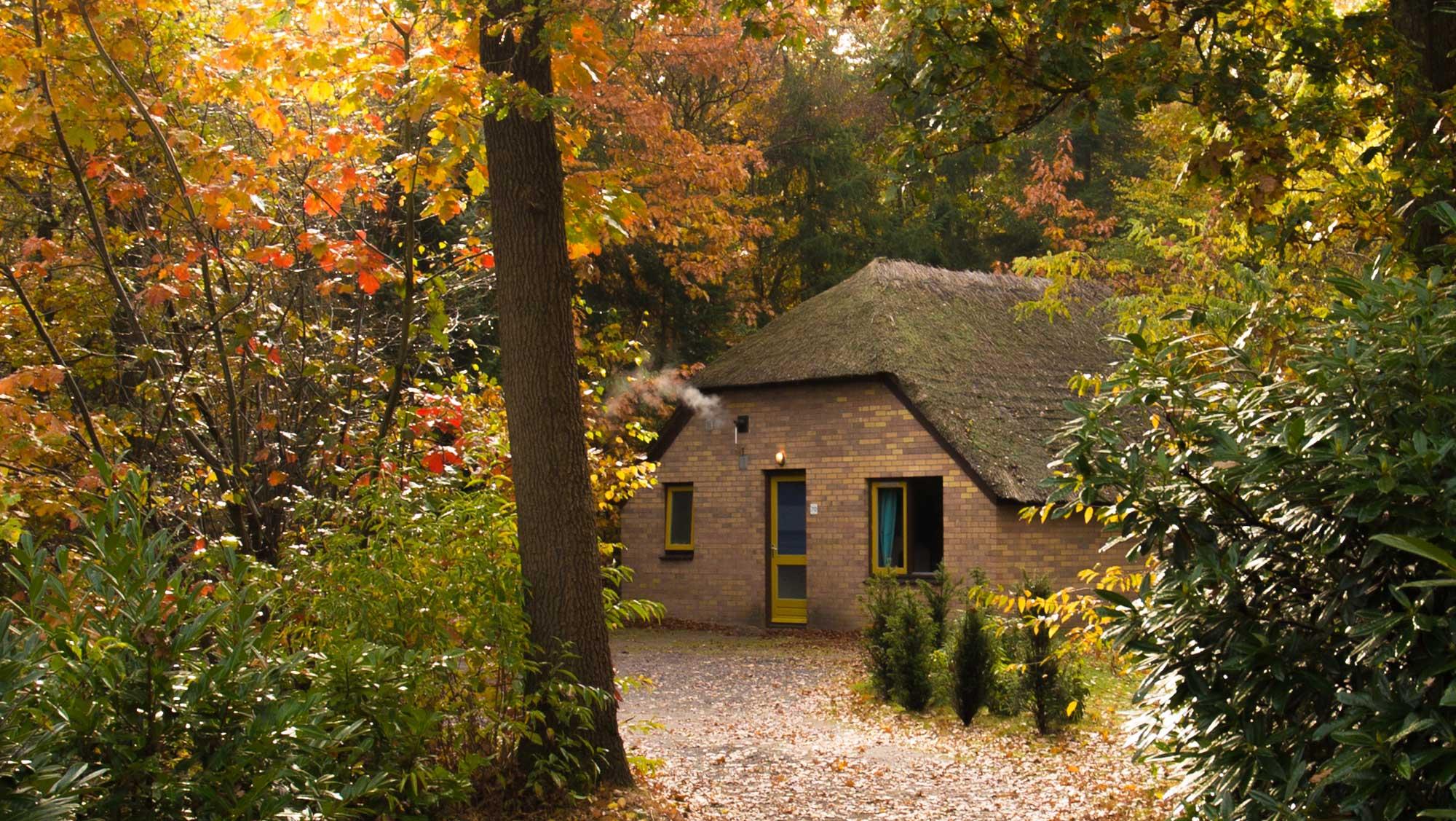 6pers bungalow Hattem Molecaten Park De Leemkule 07 najaar herfst