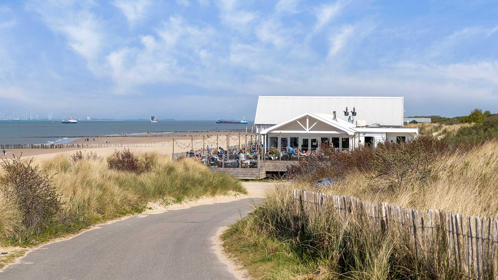 Omgeving Molecaten Park Hoogduin 12 fietsen