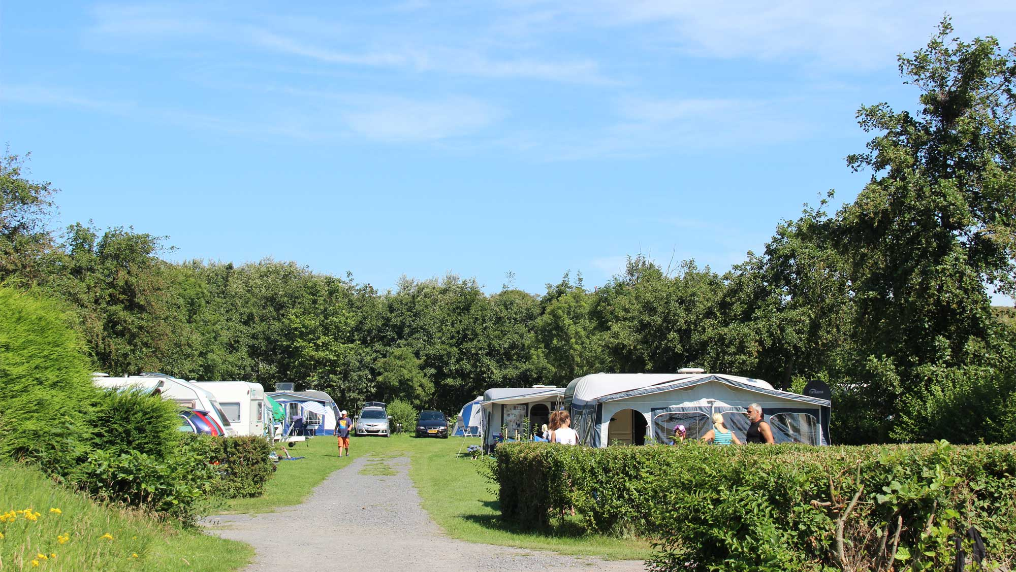 Comfortplaats vanaf 105m2 huisdierveld kamperen Molecaten Park Hoogduin 01