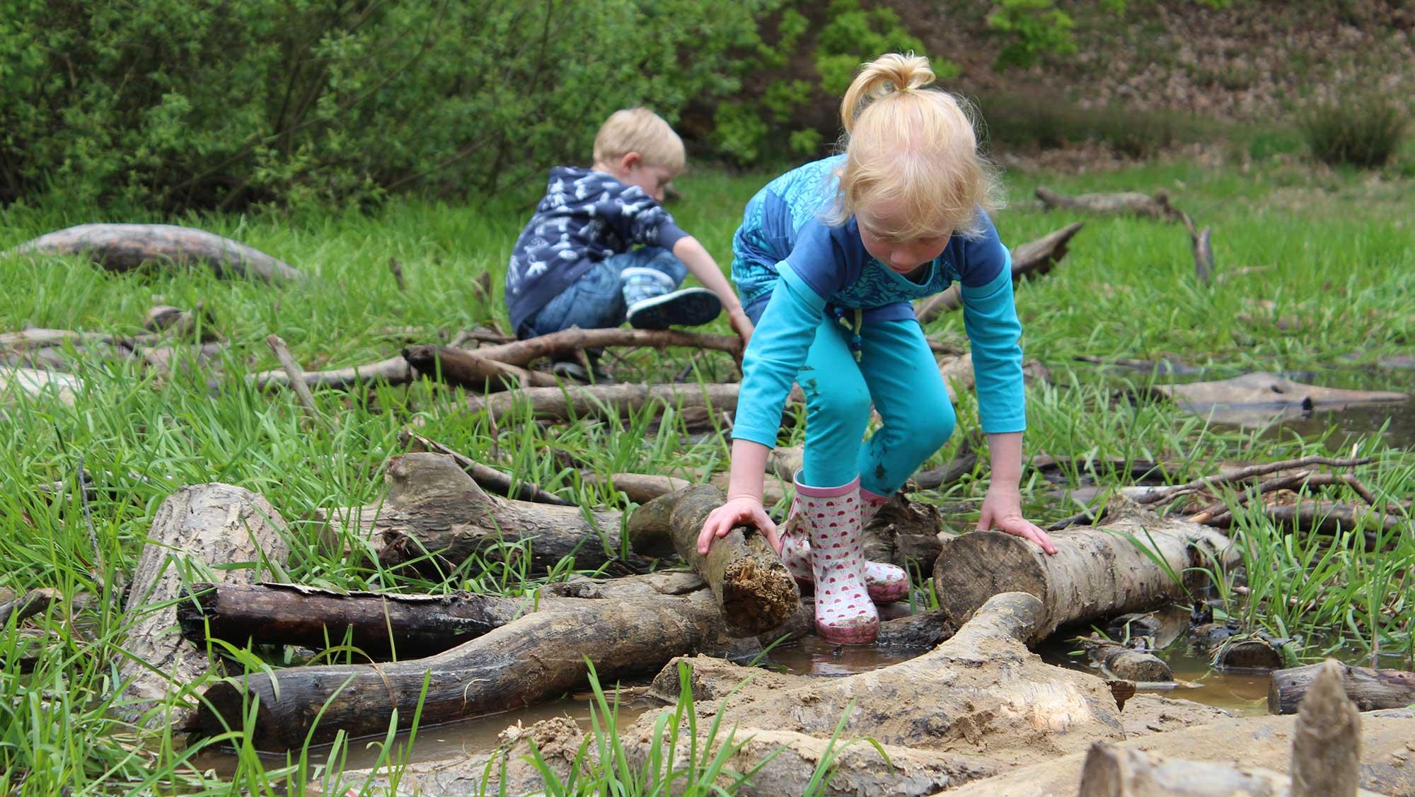 Omgeving Molecaten parken Hattem Heerde 24a avontuur in het bos