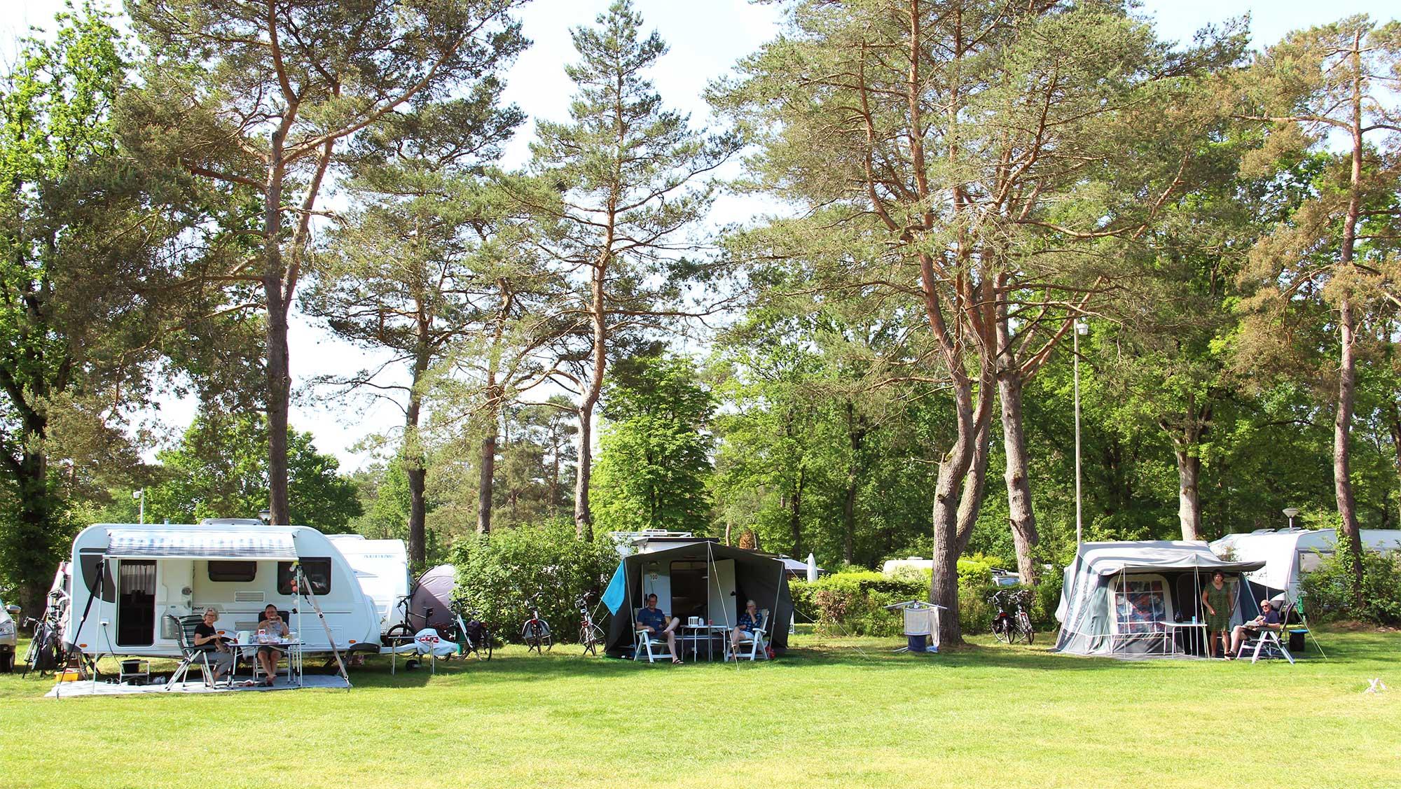 Comfortplaats kamperen Molecaten Park De Koerberg 07