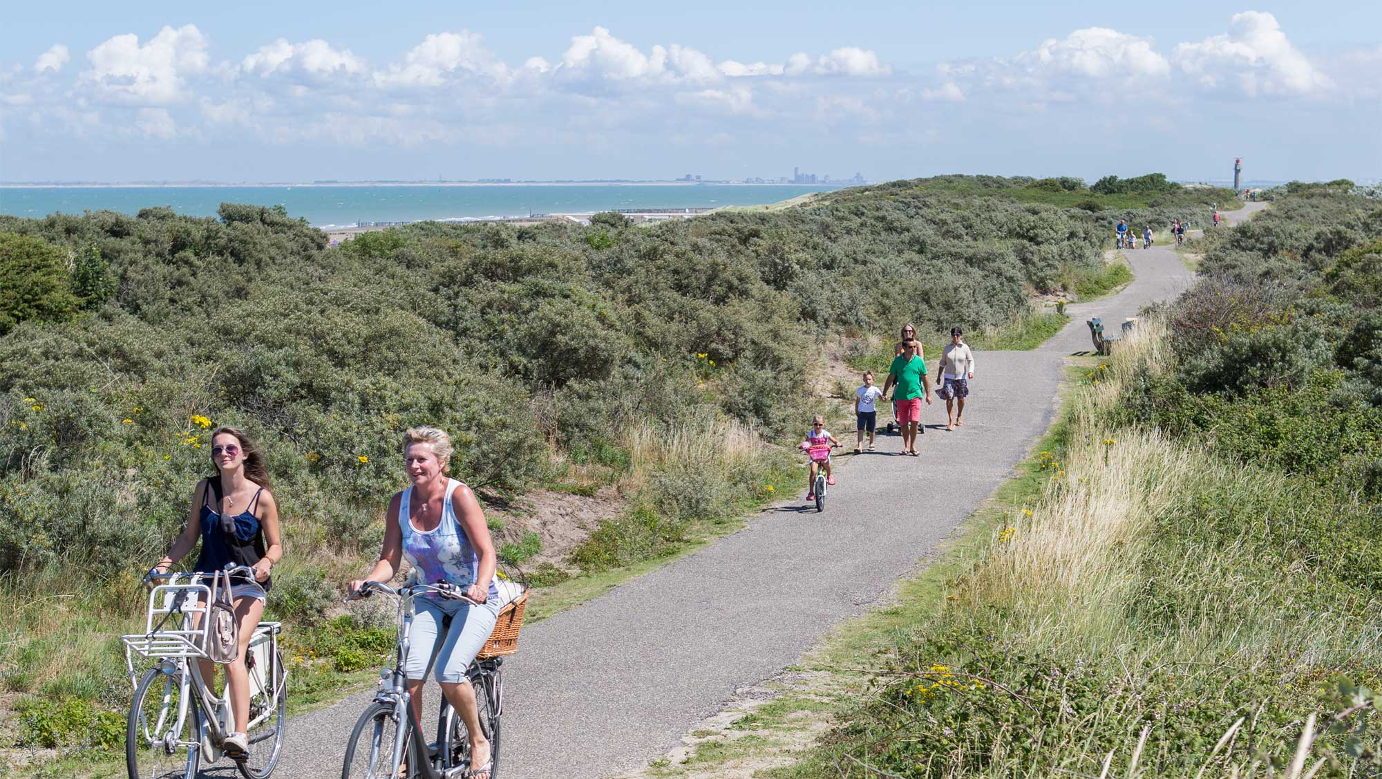 Omgeving Molecaten Park Hoogduin 06 fietsen